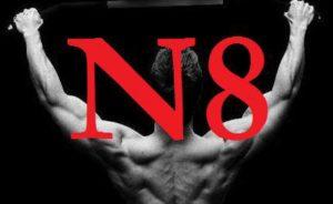 n8ts logo