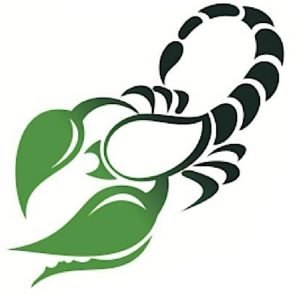 health-horoscope-scorpio