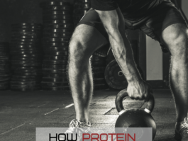 eat protein to build lean muscle