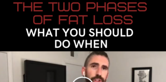 fat loss journey
